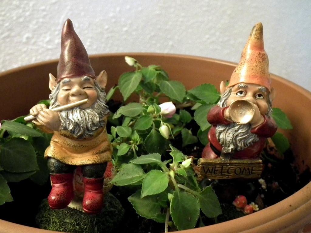 Nains de jardin